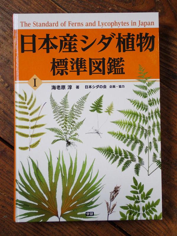 の 植物 植物 シダ コケ 違い と